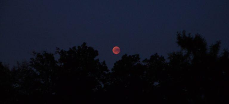 Blodmånen fotograferad från Smedby – Mars stoftstorm lägger sig